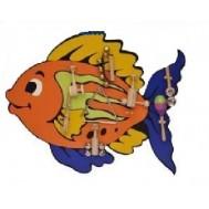 Balık Modelli Müzik Köşesi