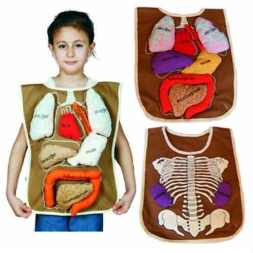 Organ Önlüğü fiyatı 80.00 TL, Organ Önlüğü modelleri, anaokulu Fen ve Doğa Köşeleri çeşitleri, Fen ve Doğa Köşeleri fiyatları