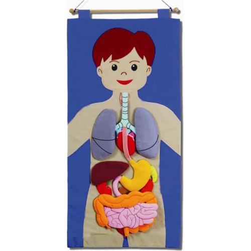 Kumaş Organ Pano modelleri, Kumaş Organ Pano fiyatı, anaokulu Fen ve Doğa Köşeleri fiyatları, anasınıfı Fen ve Doğa Köşeleri modelleri görselleri ve resimleri, anaokulu kreş malzemeleri